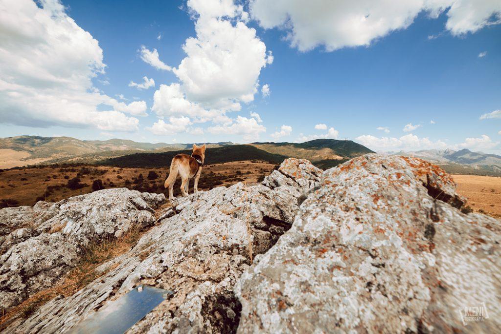 Valles mineros de Leon